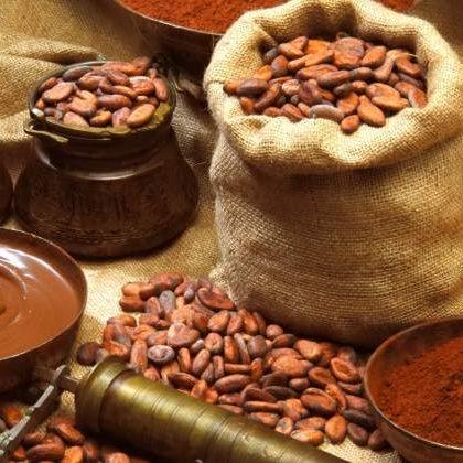 historia y origen del chocolate